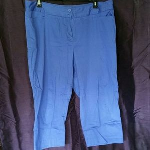 Lane Bryant Blue Dress Capri's